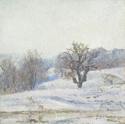 Зимовий день. Етюд